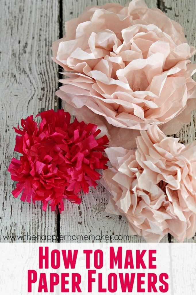 tissue paper flowers  tissue paper and paper flowers on pinterest