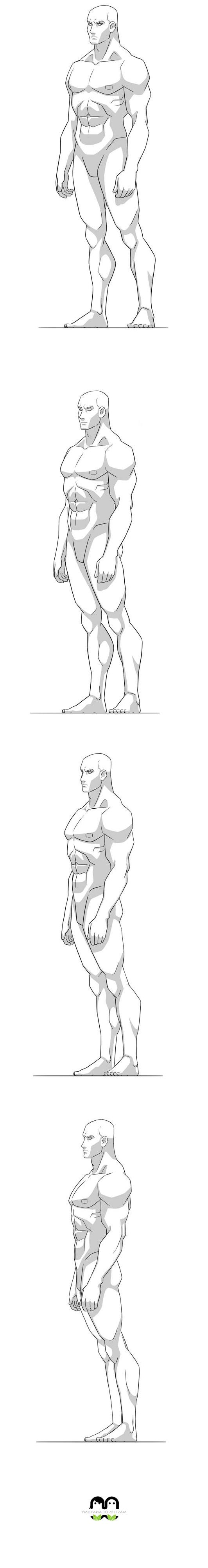best ideas about man anatomy body reference masters of anatomy men anatomy anatomy purchase paypal character design referencestm design join mangaka asdf comicart
