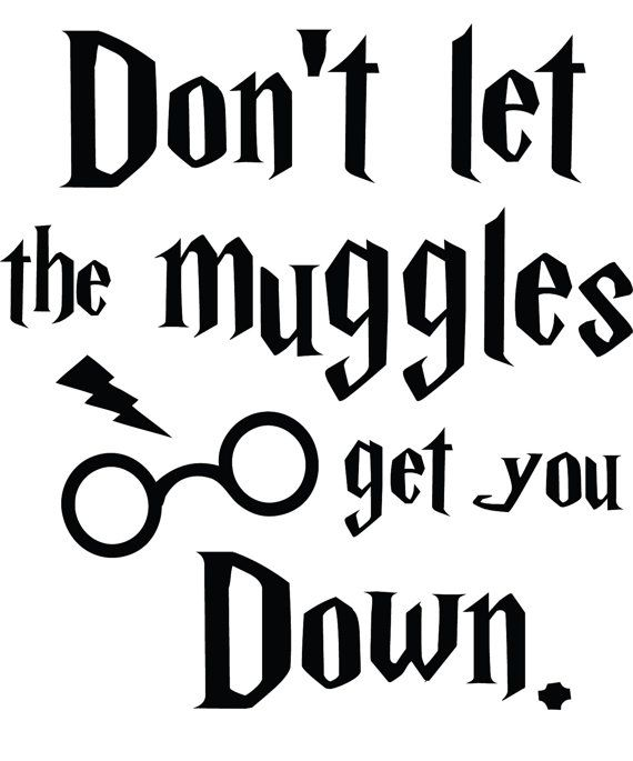 $5.00 FREE SHIPPING!  Don't let the muggles get you down Harry Potter Decal Sticker www.stick-e-decals.com