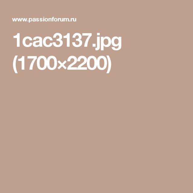1cac3137.jpg (1700×2200)