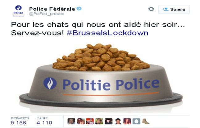 http://www.20minutes.fr/insolite/1736239-20151123-operations-antiterroristes-police-belge-offre-croquettes-chats-aidee