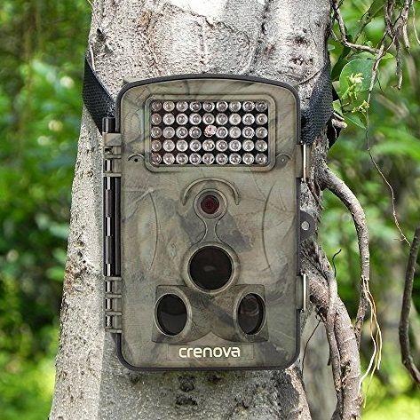 Best Cheap Trail Cameras