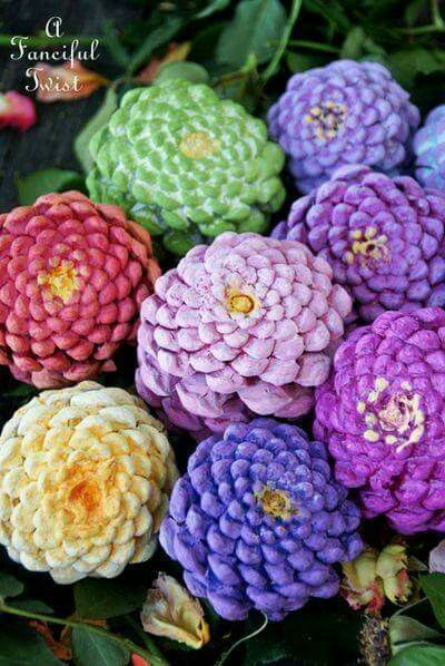 Bottoms of pine cones painted like zinnias