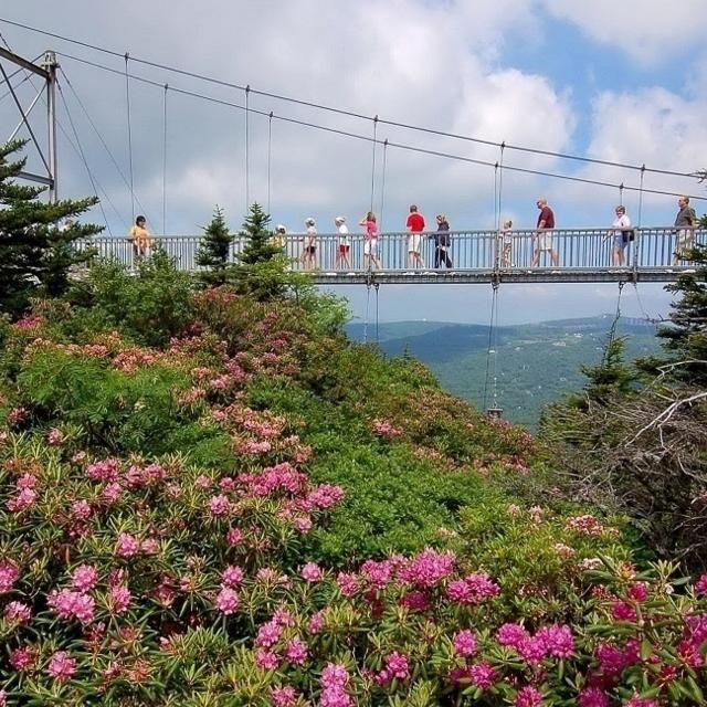 Best Places To Hike Boone Nc: 25+ Best Ideas About Nc Map On Pinterest