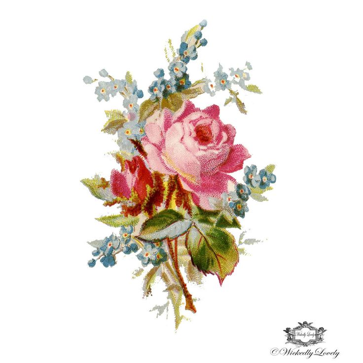 Vintage Rose and forget me knot Posy Rose by WickedlyLovelyArt