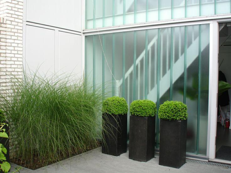 Moderne stadstuin in Roosendaal