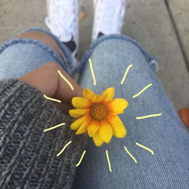 Segurando a flor, colocar esses risqinhos na edição