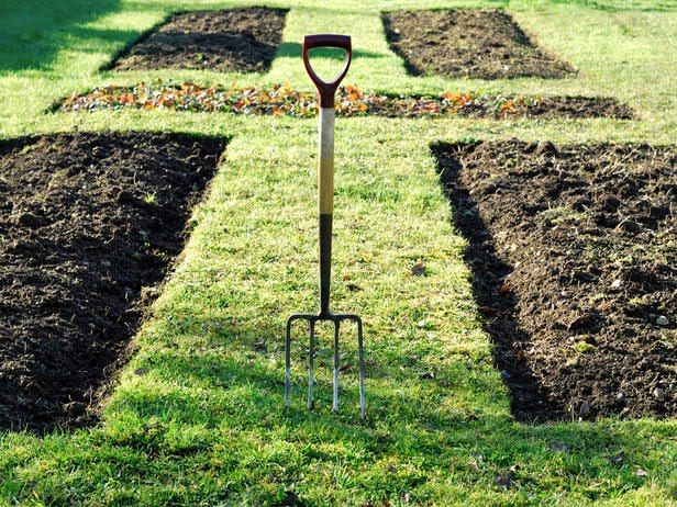First thing: tear out the front lawn, and get started on that Recession Garden!