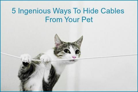 1000 ideas about hiding cables on pinterest apartment closet organization hiding cable box - How to mask cables ingenious solutions ...