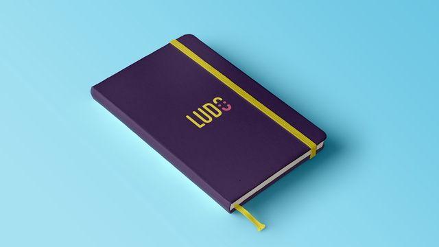 Notre projet LuDo a passé le cap des 35% sur Ulule ! Avec toi ? :)