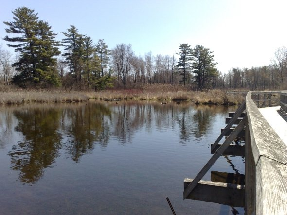 The Mill Pond - Dorchester, Ontario