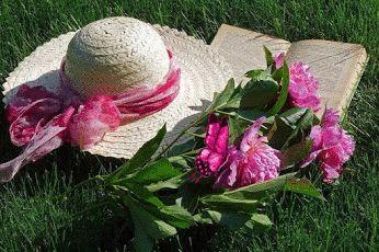 ઇઉ Comunidade feita com muito carinho pra você. Lindas flores e mensagens com muito amor. ઇઉ