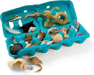 Save your beachcombing treasures in a seaside memory box. (Need to remember to take empty egg cartons with us next beach trip!)