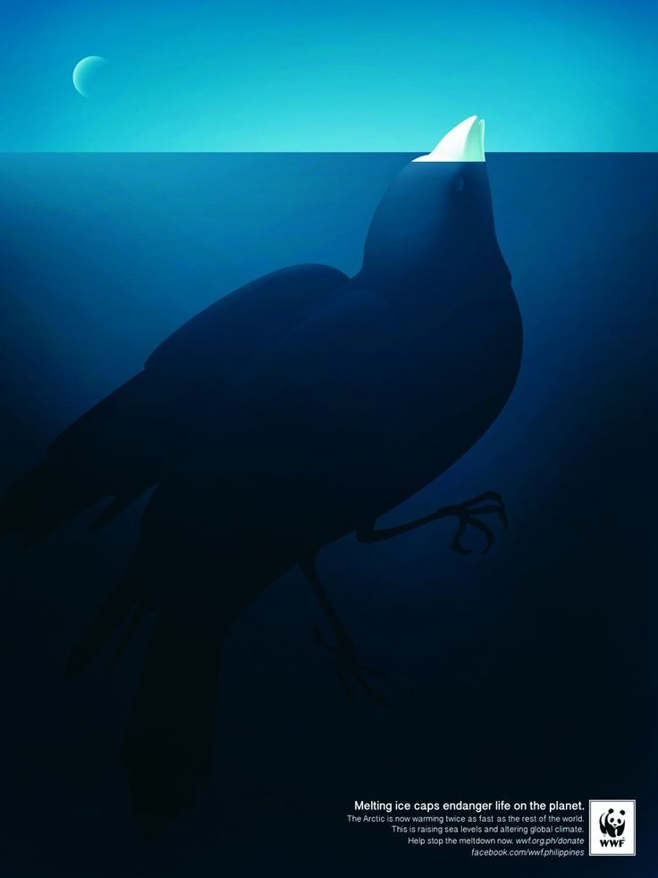 """Iceberg Bird"" by Leo Burnett Group Manila for WWF"