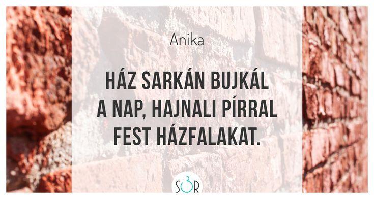 #haiku #vers #napfelkelte