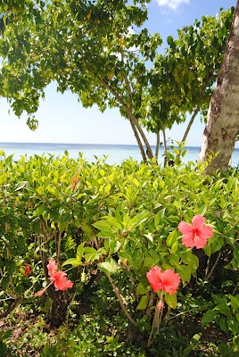 1000 images about guam on pinterest caves second world