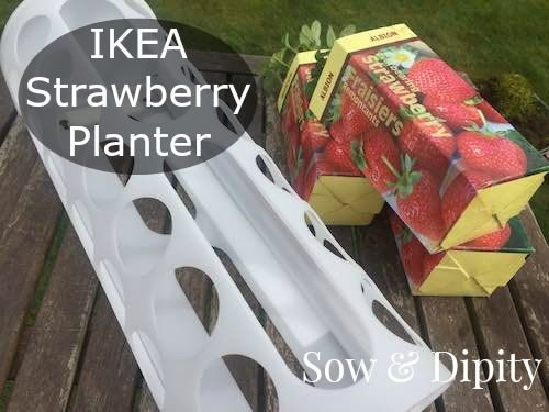 Ikea Strawberry Basket Tutorial, perfect vertical gardening solution for small space gardens