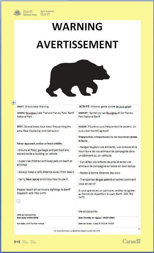 GRIZZLY BEAR WARNING : Bourgeau Lake Trail and Harvey Pass