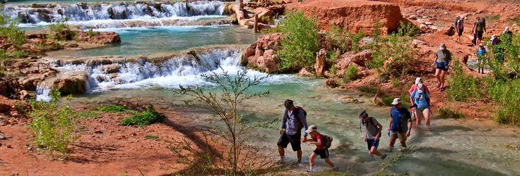 Grand Canyon Ultimate Family Hiking Tour | Havasupai & Grand Canyon