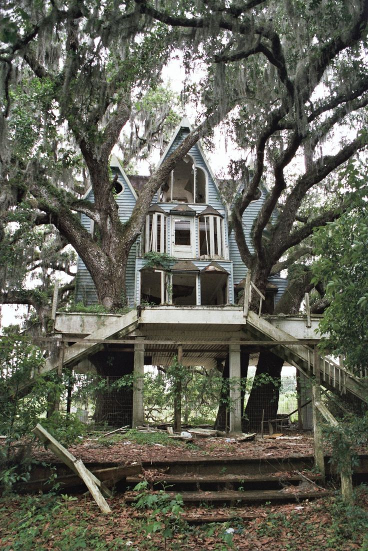 Nice Tree Houses best 25+ adult tree house ideas on pinterest | tree house deck