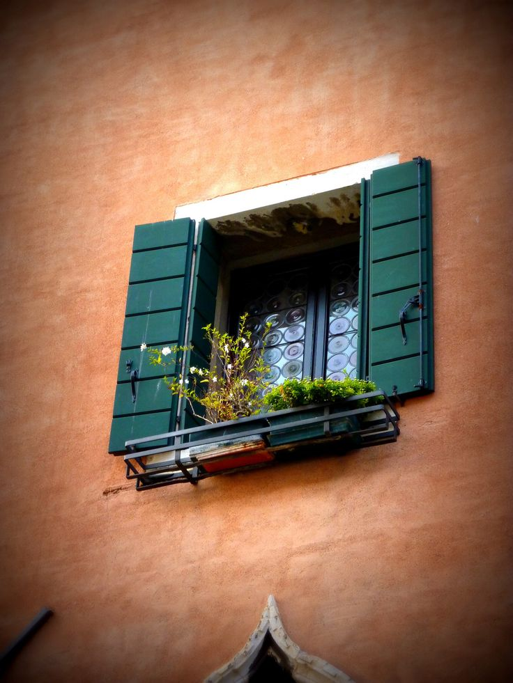 Wine bottle windows with green shutters Venice, Italy