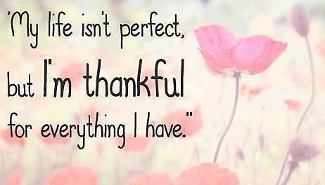 Thankful quote via Carols Country Sunshine on Facebook  Inspirational q...