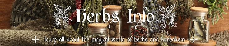 Herbs Info - Learn About Herbs - On this site you will find a compendium of information about individual herbs, articles on herbalism, plus a glossary of terms related to herbs and herbalism.