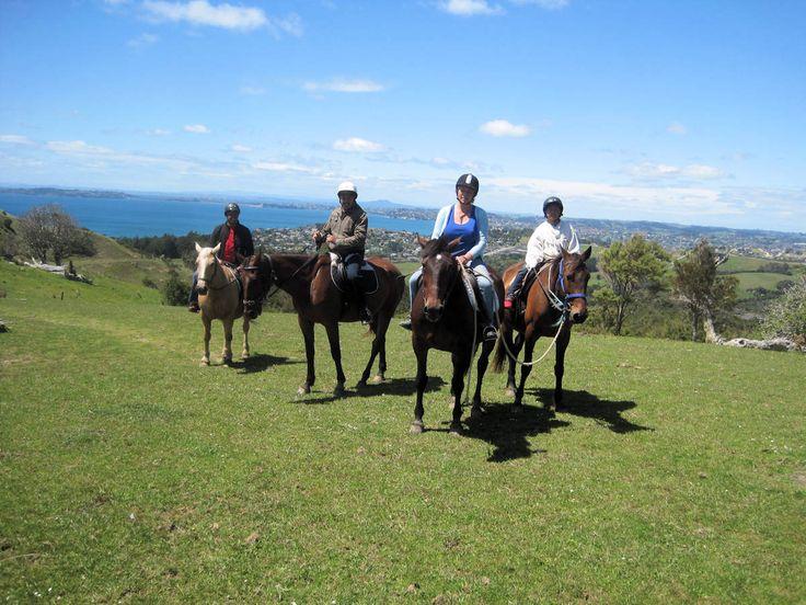 Ti Tree Hills Horse Treks