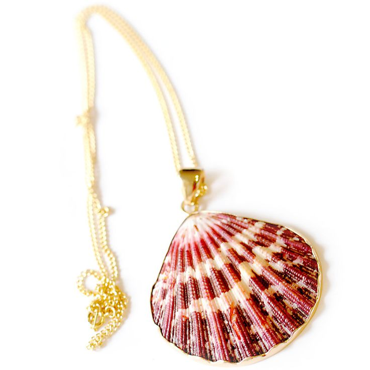 Charles Albert Shell Necklace