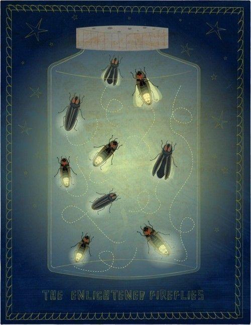 415 best fireflies images on pinterest fireflies book enlightened fireflies by john golden fandeluxe Document
