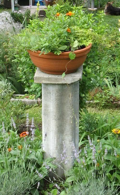 Frage an die Beton-Bastler - Seite 1 - Deko & Kreatives - Mein schöner Garten online