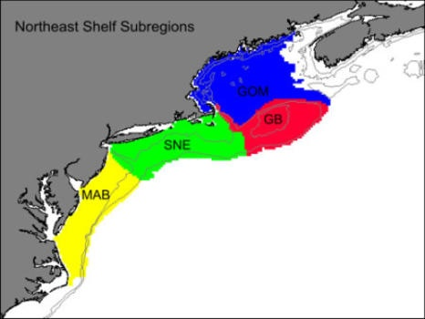 The four subregions of the Northeast Shelf Large Marine Ecosystem, which extends from Cape Hatteras, N.C. to the Gulf of Maine. MAB is the Mid-Atlantic Bight, SNE is Southern New England, GB is Georges Bank, and GOM is the Gulf of Maine.