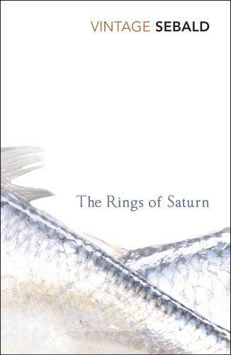The Rings Of Saturn by W G Sebald http://www.amazon.co.uk/dp/0099448920/ref=cm_sw_r_pi_dp_nfK-ub1SAQ443