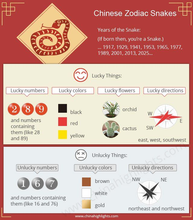 Year Of The Snake In 2020 Chinese Zodiac Snake Year Of The