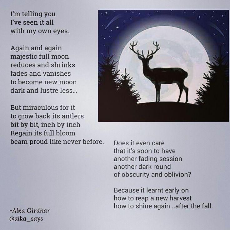 #moon #igpoets #creativewriting #riseback