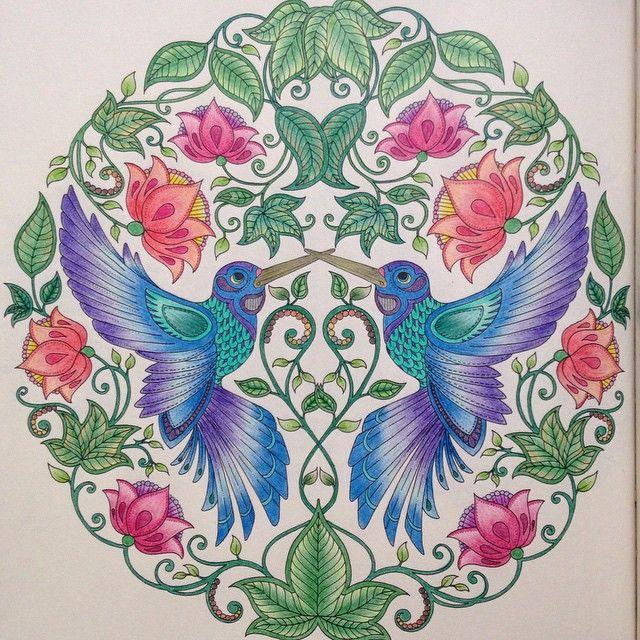 flores jardim secreto:Johanna Basford Secret Garden Colored Humming Bird Picture