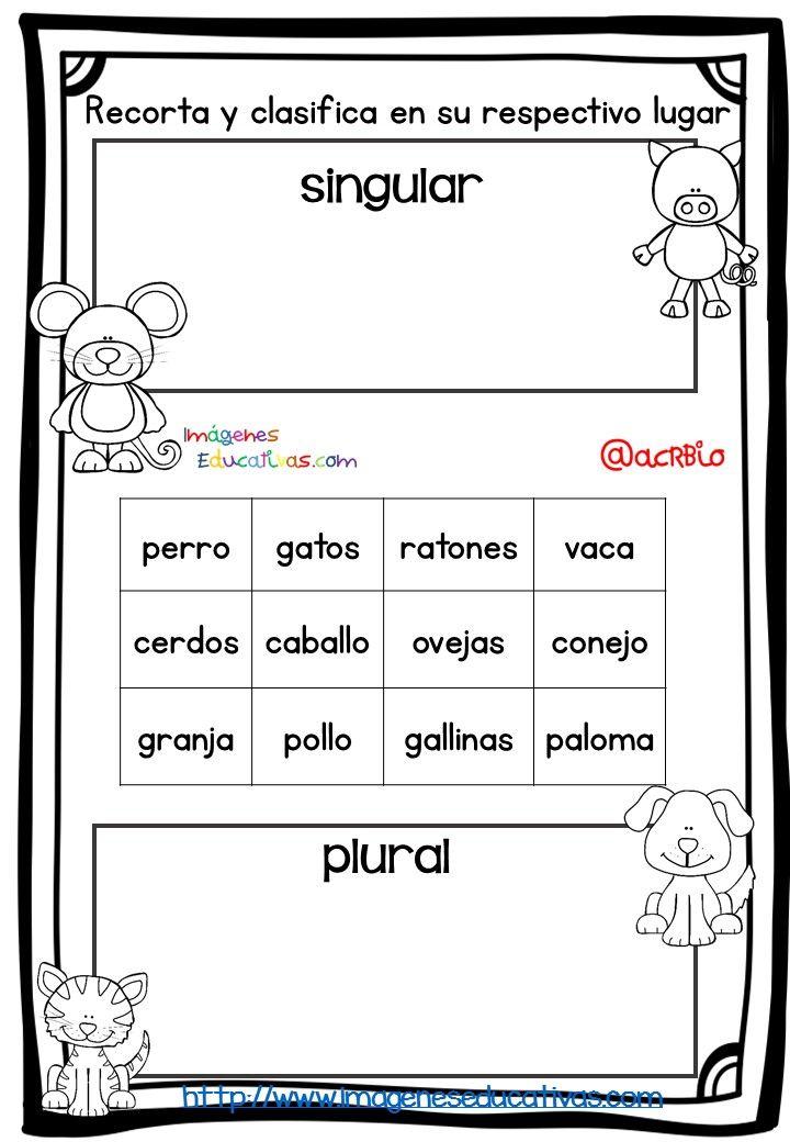 Fichas de repaso singular plural masculino y femenino (2)