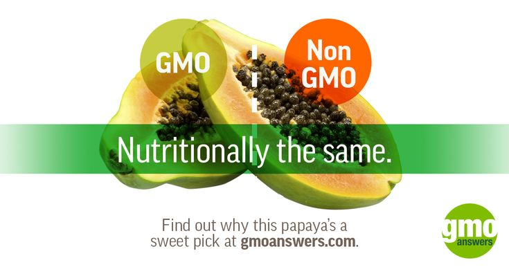 Find out why this papaya's a sweet pick at GMOAnswers.com.