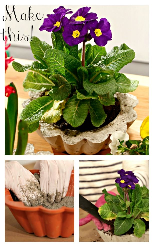 How to Make a DIY Concrete Planter (http://blog.hgtv.com/design/2014/04/08/diy-concrete-planters/?soc=pinterest): Cement Planters, Hypertufa Planters Tables And, Diy Concrete, Crafty Organized Diy, Annual Flower, Diy Projects, Gardens Plants, Concrete Planters
