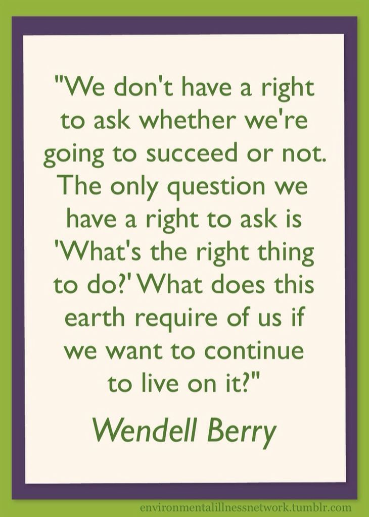 best wendell berry essay Phd thesis on adhd wendell berry online essays essay on my vegetable garden how to write a paper in apa style.