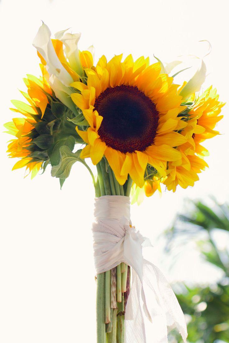 41 besten sonneblumen bilder auf pinterest sonnenblumen brautstr u e und hochzeitsblumen. Black Bedroom Furniture Sets. Home Design Ideas