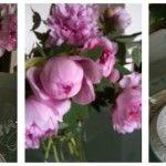 la tavola di primavera...
