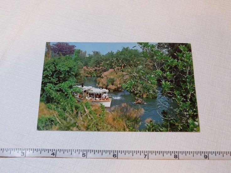 Jungle Cruise Disneyland post card RARE Postcard Magic Kingdom adventureland  #Disney