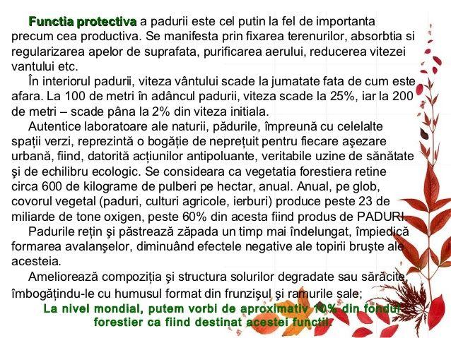 Este unanim recunoscut rolul pozitivpe care îl are vegetaţia forestieră împotrivavântului, oprind şi reducand zgomotul. As...