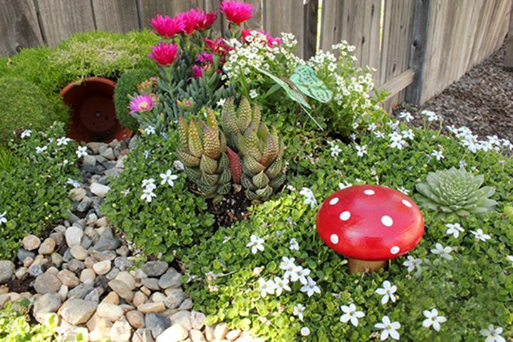 Interactive fairy gardens are a magical space for children to play and a lovely addition to any garden. Making one is quite simple and quick, but will bring hours of family enjoyment. The real imagination and magic comes alive when choosing the small details to place in your garden…with so many fantastic possibilities your garden …