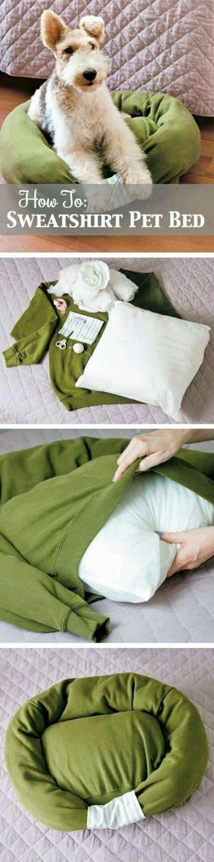 I could use my boyfriend's sweatshirt!  . Upliked by LadyRamirez