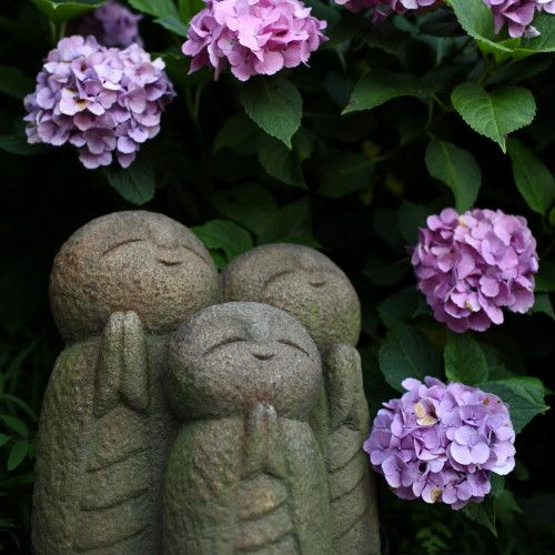 Hasedera, Kamakura  長谷寺 鎌倉