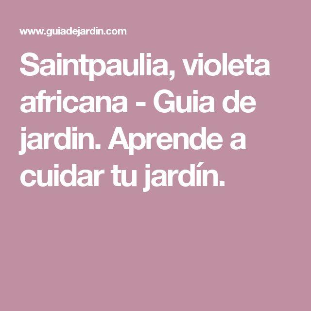 Saintpaulia, violeta africana - Guia de jardin. Aprende a cuidar tu jardín.