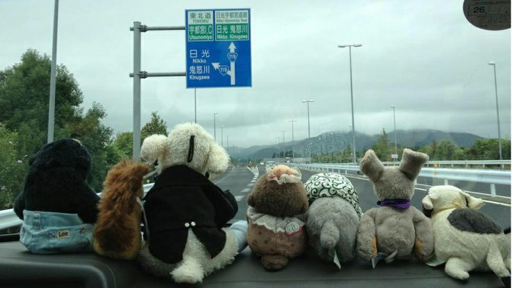 "A travel agency for stuffed animals--sounds just quirky, but then it becomes beautiful and Amelie-moving. ""Seeing my stuffed animal traveling encouraged me,"" she said. ""I began to think that I should do what I can do, instead of lamenting over things that I can't."""