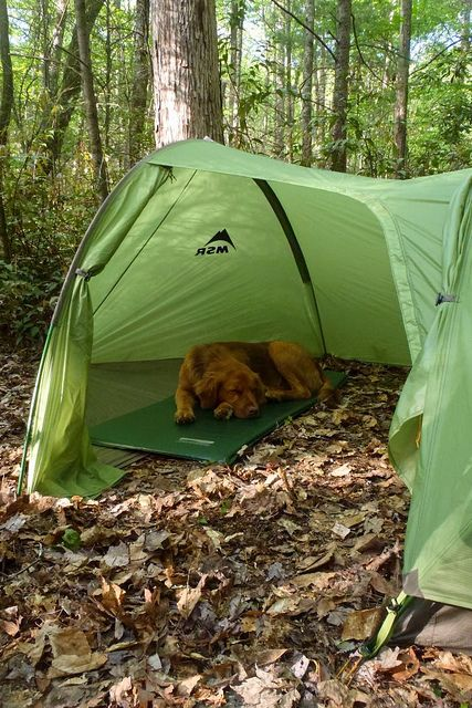 173 Best Tents Stand Alone Tents Images On Pinterest